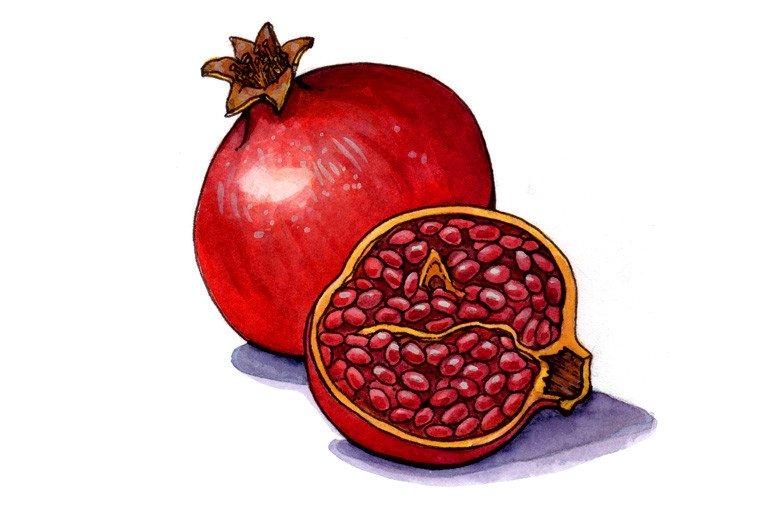 pomegranate memorial sloan kettering cancer center