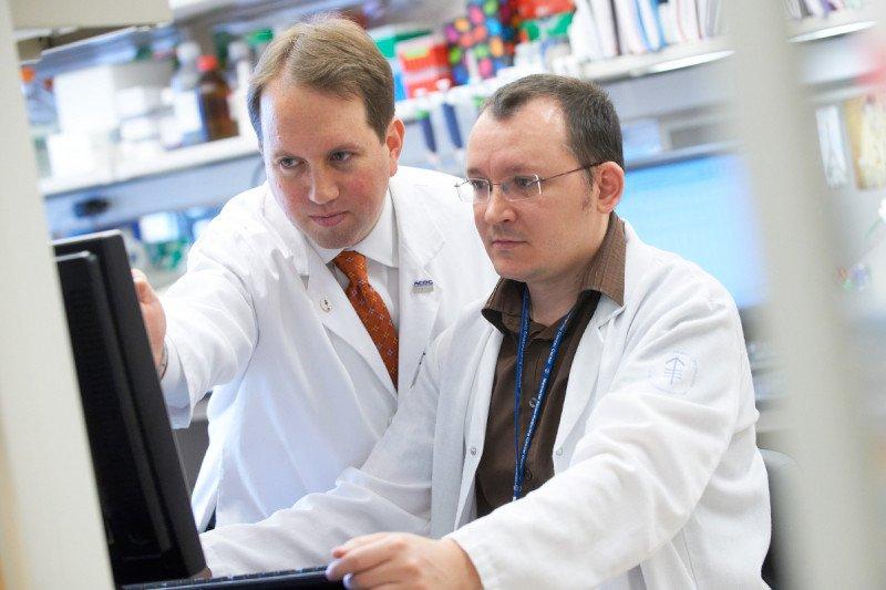 Computational Oncology