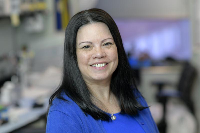 Donna Riedman