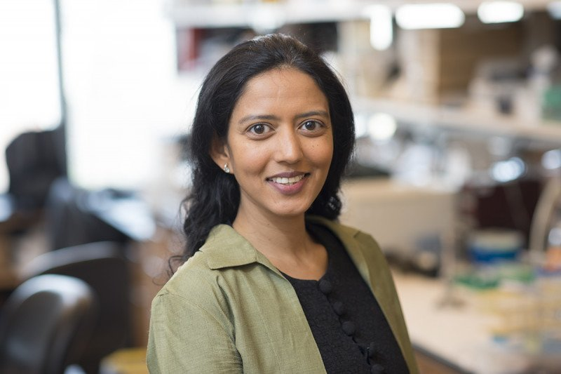 Karuna Ganesh, MD, PhD