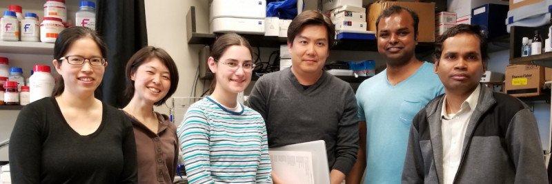 The Meng-Fu Bryan Tsou Lab