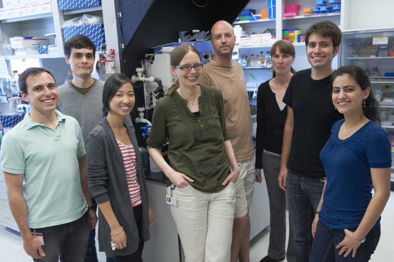 Pictured: Julia Kaltschmidt Lab group photo