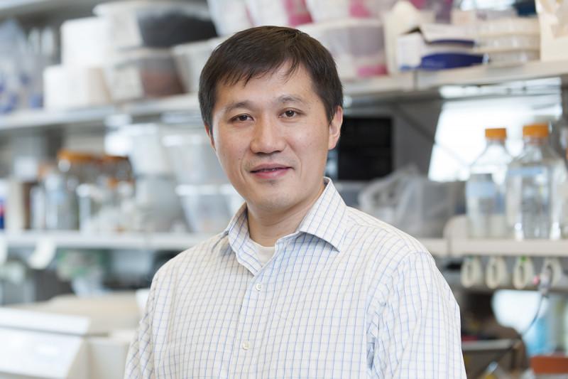 Minkui Luo, PhD