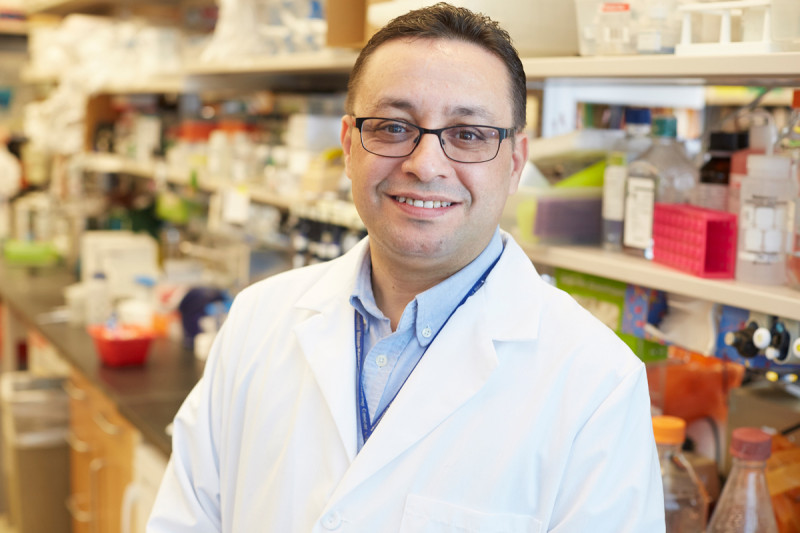 Taha Merghoub, PhD