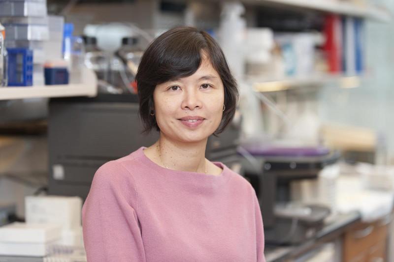 The Nai Kong Cheung Lab Hoa Tran Memorial Sloan Kettering Cancer Center