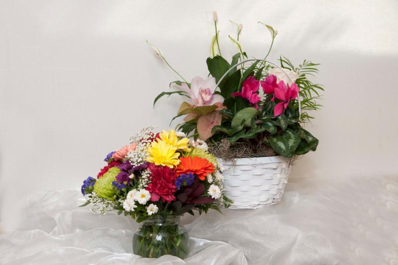 Visiting Us: Gift Shop   Memorial Sloan Kettering Cancer Center