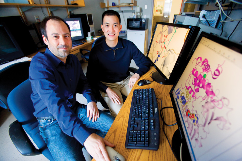 Christopher Lima (left) and Derek Tan revealed the mechanism of a key cellular process.