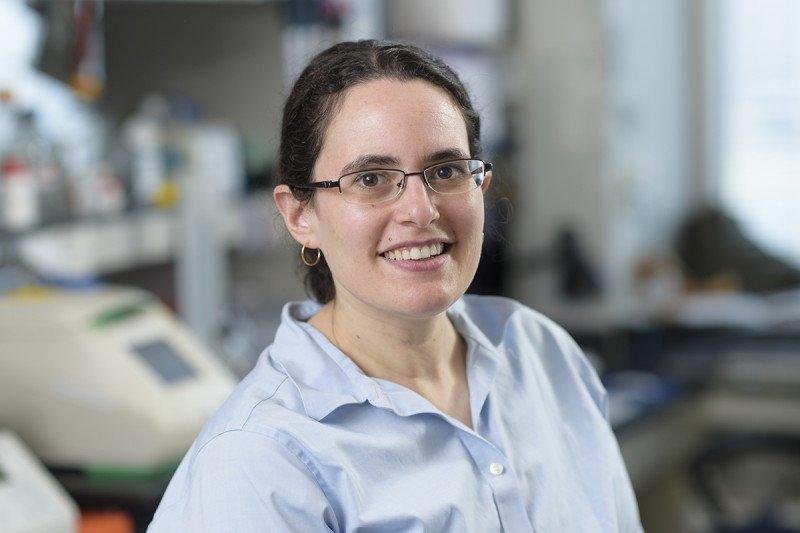 Elizabeth Kass, PhD