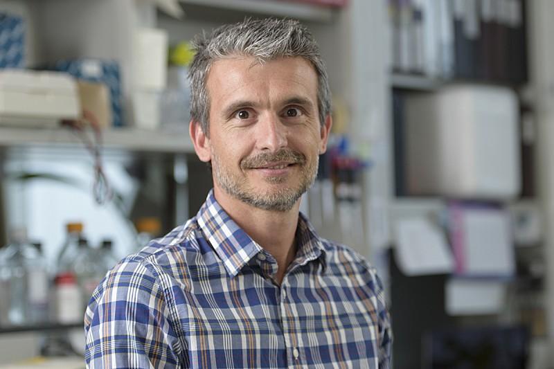 Fabio Vanoli, PhD