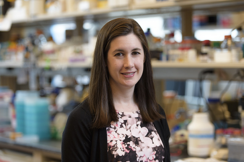 Allison Fay, PhD