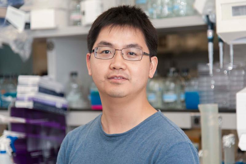 Zengrong Zhu, PhD