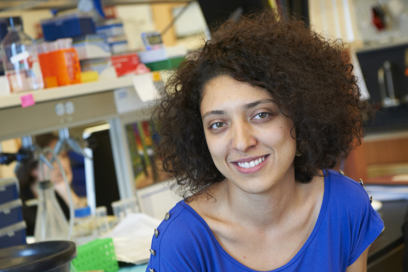 Saida Dadi, PhD