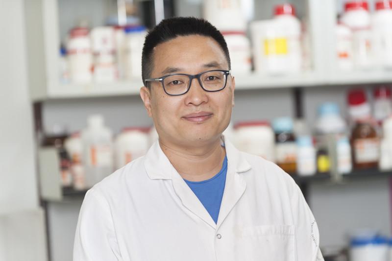 Wenfu MA, PhD
