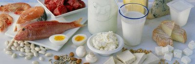 Photo of an array of high-protein foods, including meat, cheese, milk, and nuts.