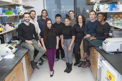 The Yael David Lab