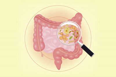 Illustration of intestinal tract with magnifying glass held over it revealing various microbes.