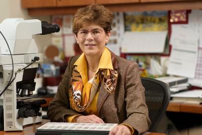 MSK Director of Breast Pathology Edi Brogi