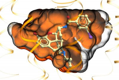 MP1104 binding to the kappa opioid receptor