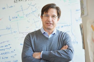 John Petrini, PhD