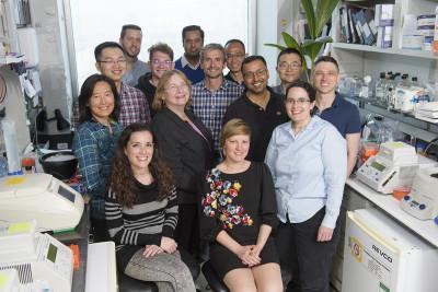 Maria Jasin Lab Group
