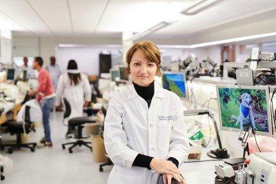 MSK pathologist Cristina Antonescu in her laboratory