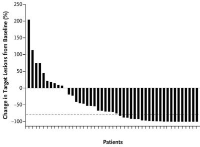 Figure 3. -- Clinical activity in patients who received the concurrent regimen of nivolumab and ipilimumab<sup>(12)</sup>
