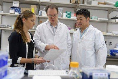 Pictured: Kristina Knapp, Andrei Krivstov & Xujun Wang