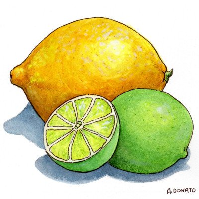 effectiveness of limonine D-limonene: the key to lemon oil's effectiveness  lemon oil uses and reported health benefits are many.