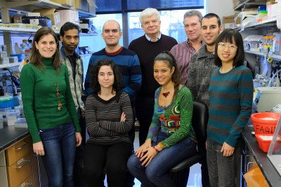 The Fagin Lab
