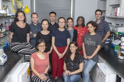 The Danwei Huangfu Lab