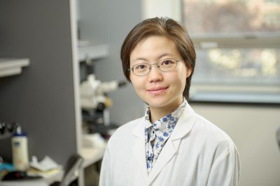 Lu Wang, MD, PhD