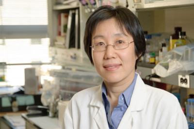 Liying Zhang, MD, PhD