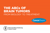 CancerSmart: The ABCs of Brain Tumors: From Biology to Treatment