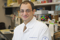 Omar I. Abdel-Wahab, MD