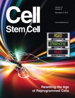 Reprinted from Cell Stem Cell, Volume 13, Issue 6. Copyright  2013, with permission from Elsevier Inc. Cover design and illustration by Justine Miller and Newsome Design.