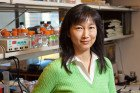 The Emily Cheng Lab