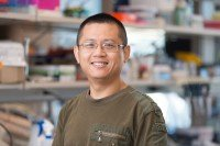 Xuanhua  Xie, PhD