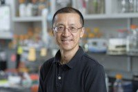 Weiyi Wang, PhD