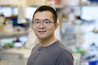 Weiran Feng, Graduate Student