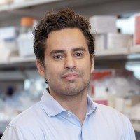 Diego Chowell, PhD