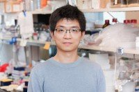 Chun Chou, Research Fellow