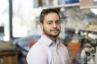 Mohamed Amine Feliachi, Research Technician
