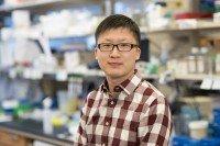 Yu-Jui (Ray) Ho, PhD