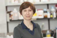 Elena Goldberg, PhD