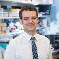 Thomas Reiner, PhD