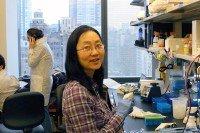 Kiki Yu Liu, PhD