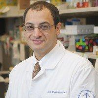 Omar Abdel-Wahab, MD