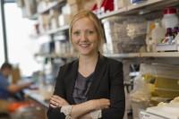 Rikke B. Holmgaard, PhD