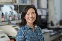 Patricia Sung, PhD