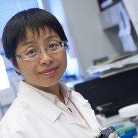 She Chen, MD, PhD